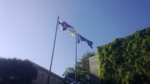 Finnish & EU Flags